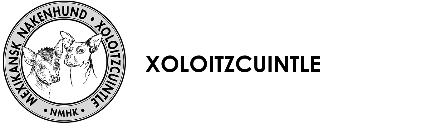 Xoloitzcuintle Logo